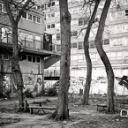Heygate: A Natural History